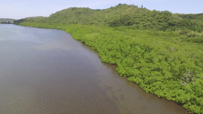 Aerial drone shot traveling along edge of Mangroves at High tide