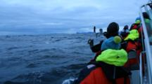 Tourists On Vessel At Andenes Norway Watching Orcas And Humpback Whales, Hunting For Herring