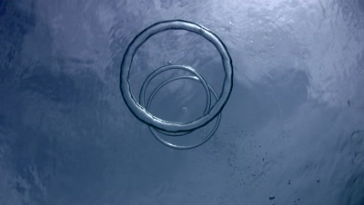 Bubble rings joining each other