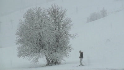 People Ski Past Tree While Snow Falling In The French Alps