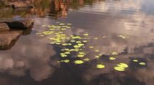 Clouds Reflect In Tranquil Kimberley Water Pool With Lily Pads