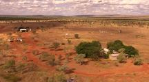 Aerial Cattle Muster, Kimberley