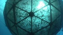 Tilt Up To Reveal Sun Shining Through Aquapod Fish Farm.