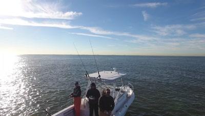 NY striper fishing with Humpbacks and Menhaden