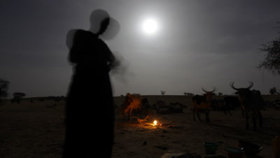 Mid shot desert Tuareg nomad campfire with cows and people and dramatic full moon backdrop