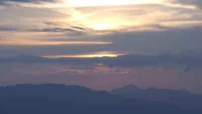 Medium wide angle orange sunset over densely forested landscape