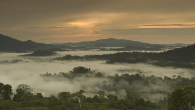Wide angle over densely forested landscape with mountains and boiling clouds in the valleys, soft eve or morn sky