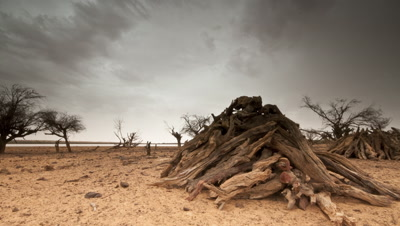 Medium wide angle rain clouds move slowly over dry sandy desert drought landscape with piles of gathered firewood in foreground