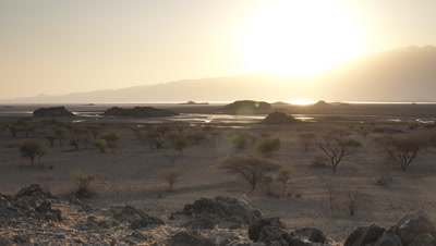Wide angle sunrise over scrubby grassland beside lake dotted with acacia trees burning out to horizon
