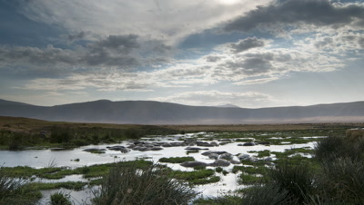 Wide angle Mandusi Swamp hippo pool with bathing hippos in foreground, scudding clouds and Ngorongoro crater walls behind