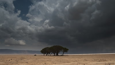 Wide angle pan right across dry grasslands of Ngorongoro Crater as heavy dark storm clouds and rain sweep dramatically across