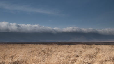 Wide angle dry grassland of Ngorongoro crater floor with dramatic banks of rolling cloud spilling over rim