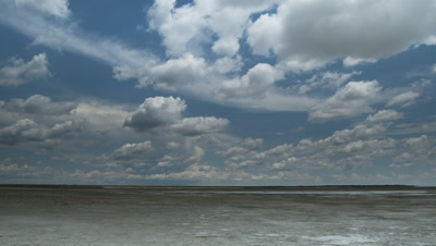 Wide angle fluffy white rain clouds, cumulonimbus, in blue sky travelling fast over vast Etosha salt pan