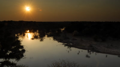 Wide angle top shot groups of elephants drinking at bend in the Boteti river as sun sets