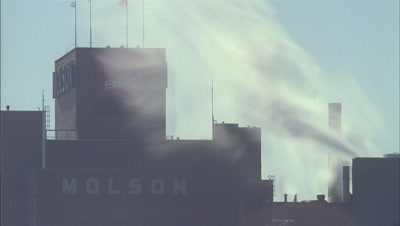 Mid shot roof and streaming steam from chimney stacks of Molson brewery -awarded for outstanding energy management