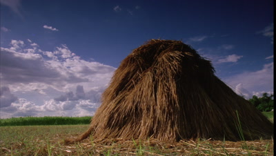 Medium wide angle field with piled up golden haystack and rich blue sky with fluffy white clouds streaming overhead