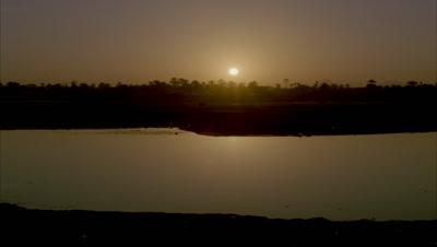Wide angle golden sun rises from black over River Nile reflecting in pool with silhouetted palms then starts to burn out
