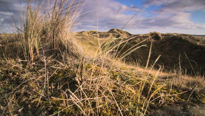Vertical track to reveal sand dune landscape from behind Marram grass. Dunes curve through frame in foreground, while you can see the extent of the dune system, as the shot progresses.