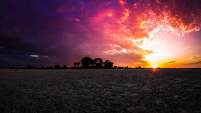 Nxai Pans, Baines Baobabs, Sunrise
