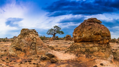 Thuderstorm, baobab tree, Rocks spur, Tuli Game reserve