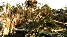 Cyclone Devestation