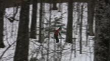 Tracking American Birkebeiner Skiers, On Ski Trail Through Dense Woods