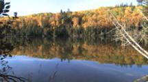 Boreal Habitat, Northern Minnesota Lake, Fall Colors