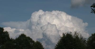 Time Lapse Cumulus Cloud Building Over Deciduous Treeline