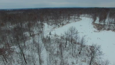 Beaver Pond and Deciduous Hardwoods in Winter