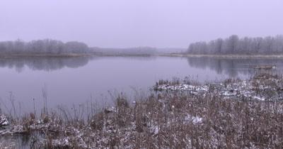 Wetland in Early Spring, ZI, Reflection of Treeline in Distance