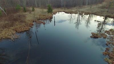 Beaver Pond, Early Spring