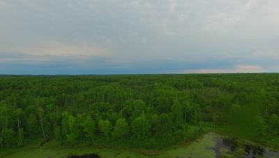 Northern Deciduous Woods, Slow Pan/tilt  Down to Beaver Pond