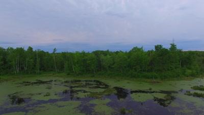 Slow Retreat Over Beaver Pond, Deciduous Hardwood Forest