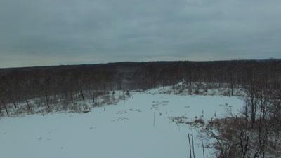Dark Winter Day, Progressing Over Beaver Pond Toward Deciduous Woods