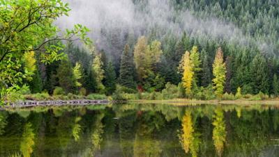 Reflection on Trillium Lake