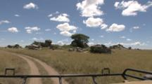 Scenic View From The Back Of A Safari Vehicle