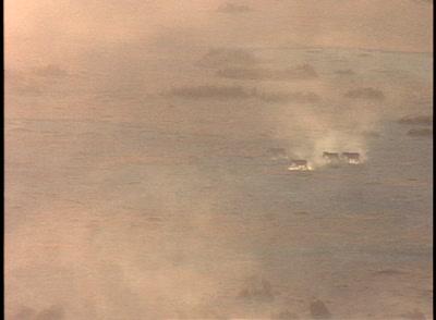 Zebras In Dust Storm